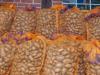 """Projekt """"Bi mi to Huus"""" ,Kartoffeln sortieren"""