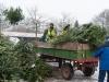 Weihnachtsbaum-Abholaktion 2017